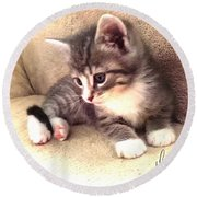 Kitten Deep In Thought Round Beach Towel