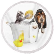 Kitten Washing Basset Hound In Tub Round Beach Towel