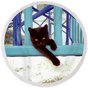 Kitten With Blue Rail Round Beach Towel