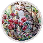 Kitty In The Window Round Beach Towel