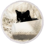 Kitty Stalks In Sepia Round Beach Towel