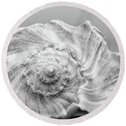 Round Beach Towel featuring the photograph Knobbed Whelk by Benanne Stiens