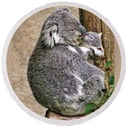 Koala Mom And Child Round Beach Towel
