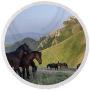 Kobilini Steni Peak Horses-1 Round Beach Towel