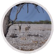 Round Beach Towel featuring the photograph Kudu And Springbok 2 by Ernie Echols