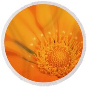 La Fleur D'orange Round Beach Towel