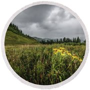 Round Beach Towel featuring the photograph La Plata Wildflowers by Margaret Pitcher