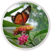 Lacewing Butterfly Round Beach Towel