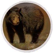 Black Bear In The Fall Round Beach Towel