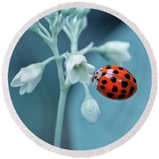 Round Beach Towel featuring the photograph Ladybug by Mark Fuller