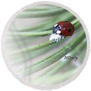 Ladybug On Pine Round Beach Towel