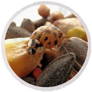 Ladybug On The Run Round Beach Towel by Belinda Lee