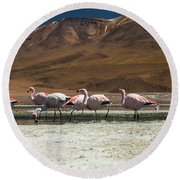 Round Beach Towel featuring the photograph Laguna Colorada, Andes, Bolivia by Gabor Pozsgai
