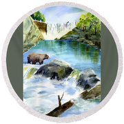 Lake Clementine Falls Bear Round Beach Towel