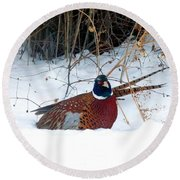Round Beach Towel featuring the photograph Lake Country Pheasant 2 by Will Borden