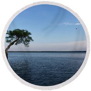 Lake Disston Cypress #2 Round Beach Towel
