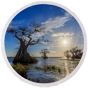 Lake Disston Cypress Paradise Round Beach Towel
