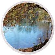 Lake Ella Winter Cypress Round Beach Towel