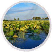 Pointe Mouilee Lake Erie Round Beach Towel
