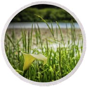 Lake Lily Round Beach Towel