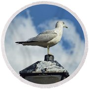 Lamp Post Eddie Round Beach Towel by Jan Amiss Photography
