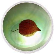 Lampionblume - Physalis Alkekengi Round Beach Towel