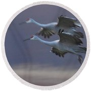 Round Beach Towel featuring the photograph Landing Gear Down by Shari Jardina
