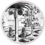 Landscape, Illustration From India Orientalis, 1598  Round Beach Towel