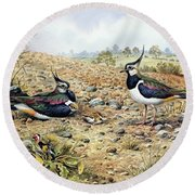 Lapwing Family With Goldfinches Round Beach Towel