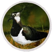 Lapwing Round Beach Towel by Maria Woithofer