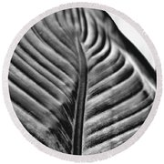Large Leaf Round Beach Towel