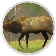 Large Pennsylvania Bull Elk. Round Beach Towel