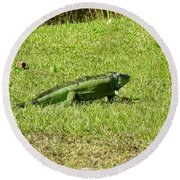 Large Sanibel Iguana Round Beach Towel