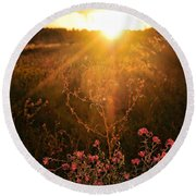 Round Beach Towel featuring the photograph Last Glimpse Of Light by Jan Amiss Photography
