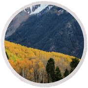Round Beach Towel featuring the photograph Last Light Of Autumn Vertical by David Chandler