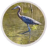 Round Beach Towel featuring the photograph Late Afternoon Fishing Expedition  by Carol Bradley
