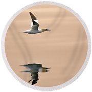 Late Arrival Round Beach Towel by Tony Beck