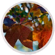 Late Autumn Colors Round Beach Towel