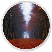 Late Fall Forest Round Beach Towel
