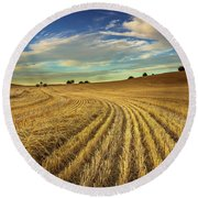 Late Harvest Round Beach Towel