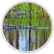 Round Beach Towel featuring the photograph Later Gator by Al Powell Photography USA