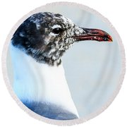 Laughing Gull Profile Round Beach Towel