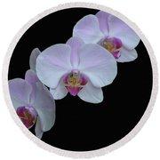 Lauritzen Gardens Orchids Round Beach Towel