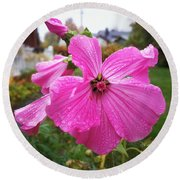 Lavatera Flower Round Beach Towel