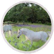 Lavender Pastures Round Beach Towel