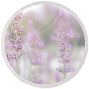 Round Beach Towel featuring the photograph Lavender 7  by Andrea Anderegg