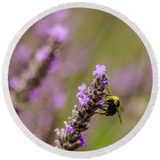 Round Beach Towel featuring the photograph Lavender And Bee by Nick Boren