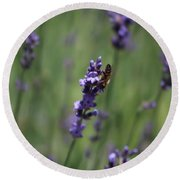 Lavender And Honey Bee Round Beach Towel