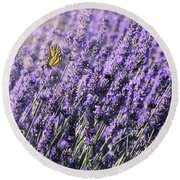 Round Beach Towel featuring the photograph Lavender And Tiger Swallowtail In The Morning Light by Diane Schuster