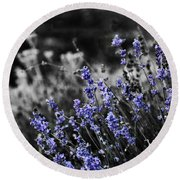 Lavender B And W Round Beach Towel